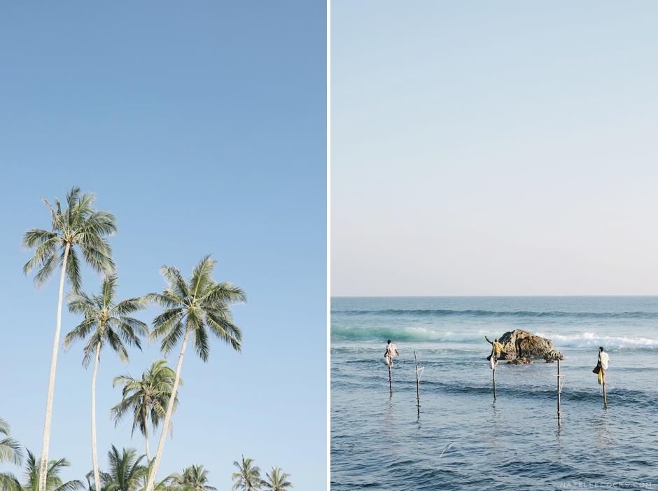 srilanka2016_good-18