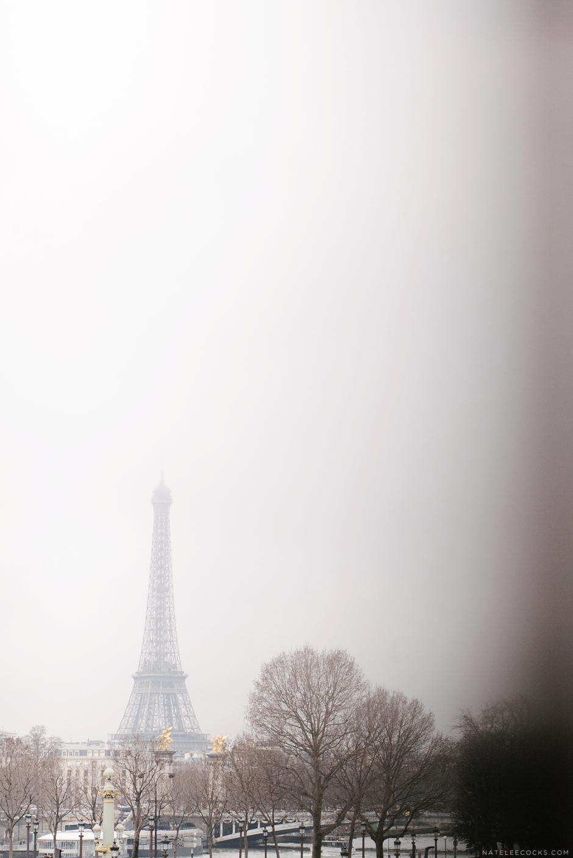 Paris012016_GOOD-1