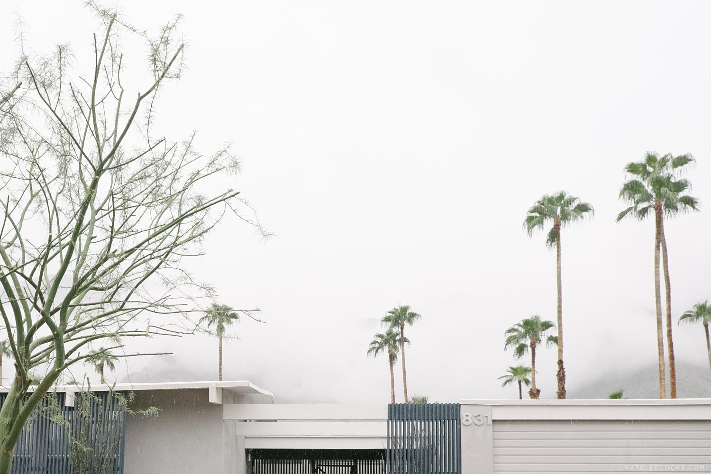 Palm Springs California Natelee Cocks